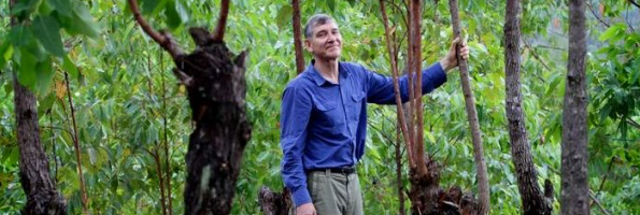 Tony Rinaudo standing among trees in East Timor
