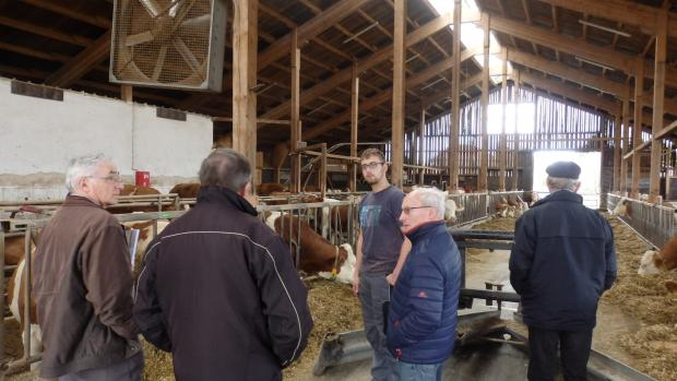 Stephan Wohlfrom, young farmer and Hans Wörle, our contact in Bayer, showing his cattle shed