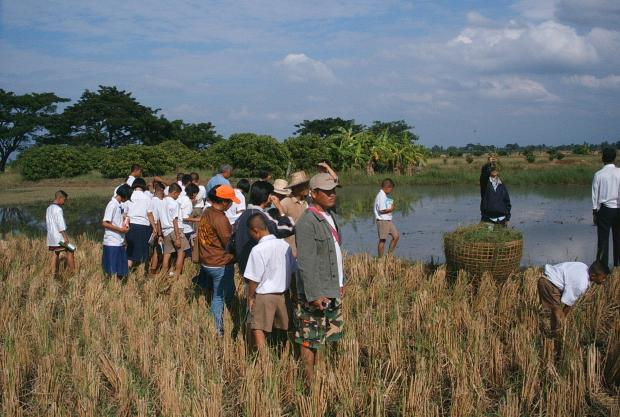 Thailand - Visiting a paddy field during the 2004 Farmers Dialogue