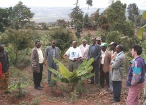 Subukia Kenya - The leaders of 'The evergreen revolution' project which involved 350 farmers